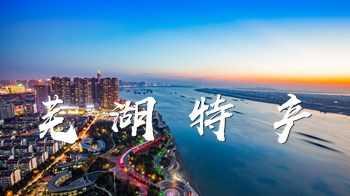 安徽芜湖特产-芜湖特产有哪些