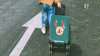 兒童拉桿箱什么牌子的好-兒童拉桿箱排行榜前十